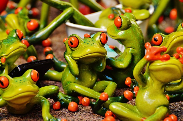 frogs-1364213_640